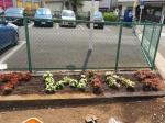 花植えのボランティア活動